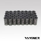 Wagler Duramax Dual Valve Spring Kit
